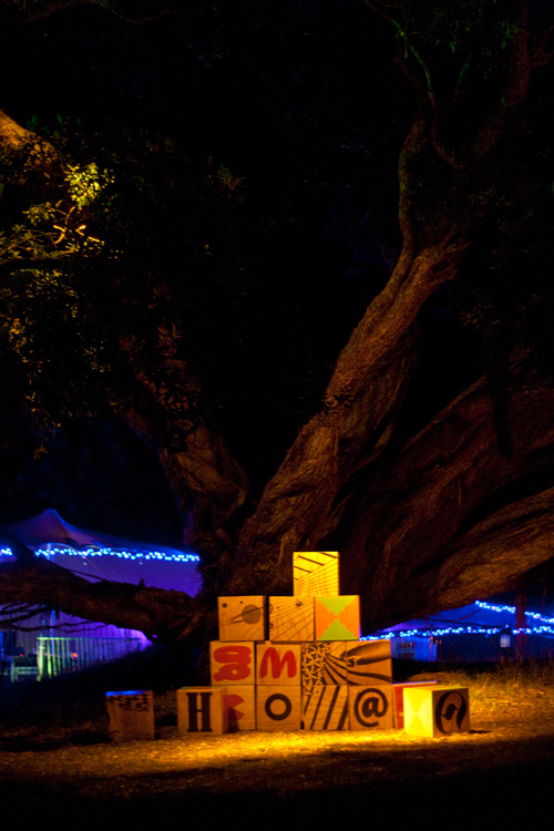 art installation for splore festival